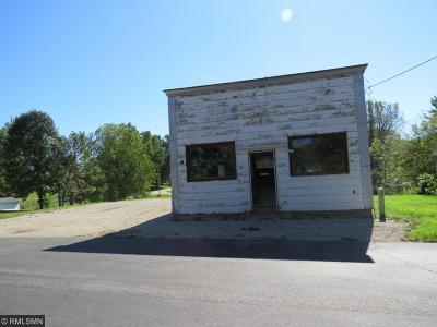 Eyota Single Family Home For Sale: 10544 Main Street NE #B