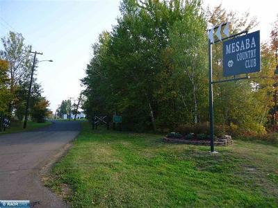 Chisholm, Hibbing Residential Lots & Land For Sale: Lots 9 & 10 Mesabi Lane