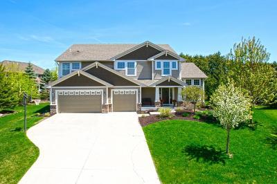 Eden Prairie, Chanhassen, Chaska, Carver Single Family Home For Sale: 2030 Edgewood Court