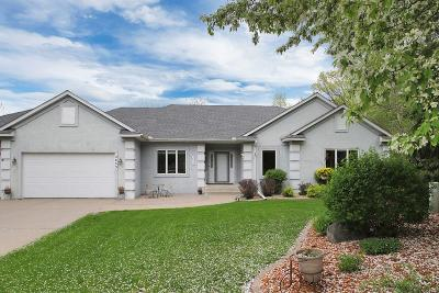 Eagan Single Family Home For Sale: 3853 Kings Wood Court