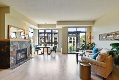 Saint Louis Park Condo/Townhouse For Sale: 3709 Grand Way #418