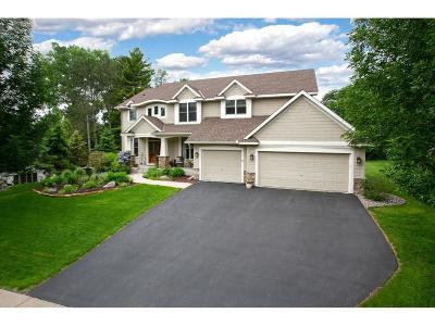 Eden Prairie Single Family Home For Sale: 9190 Cold Stream Lane