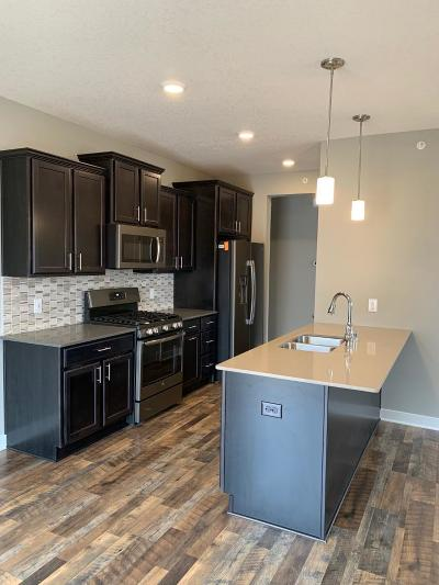 Rogers MN Condo/Townhouse For Sale: $289,990