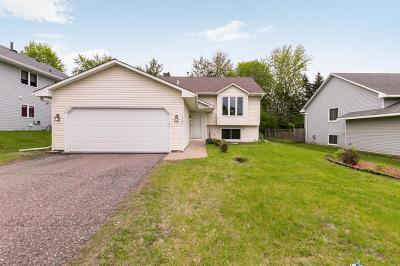 Eagan Single Family Home For Sale: 1602 Boardwalk