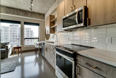 Minneapolis MN Condo/Townhouse For Sale: $350,000