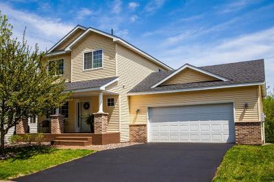Elk River Single Family Home For Sale: 18873 Tyler Street NW