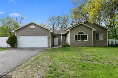 Coon Rapids Single Family Home For Sale: 799 90th Avenue NW