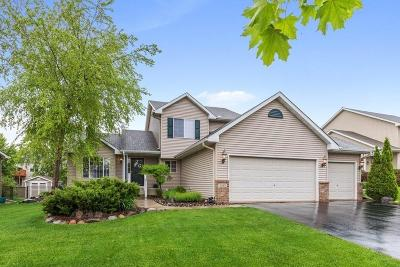 Farmington Single Family Home For Sale: 5249 198th Street W
