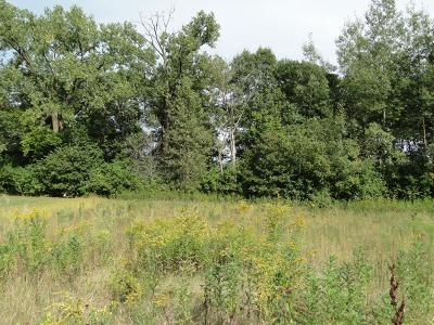 Lake City Residential Lots & Land For Sale: 306 Grand Drive