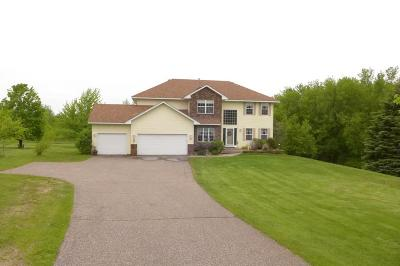 Prescott Single Family Home For Sale: W10303 521st Avenue