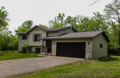 Stearns County Single Family Home For Sale: 44909 115th Avenue