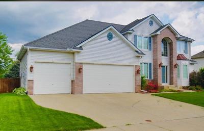 Farmington Single Family Home For Sale: 20250 Erickson Path