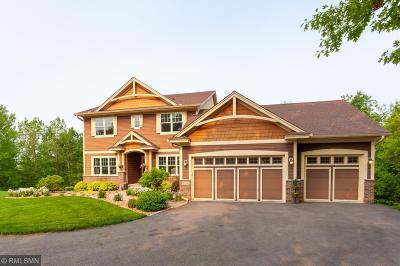 Prescott Single Family Home For Sale: W11050 435th Avenue