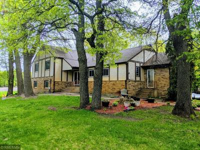 Ham Lake Single Family Home For Sale: 17745 Jefferson Street NE