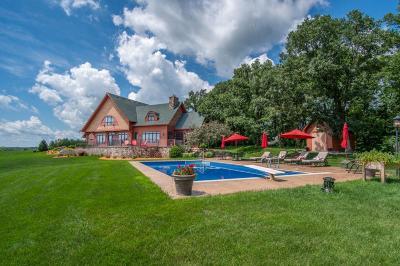 New London Single Family Home For Sale: 20599 Highway 9 NE