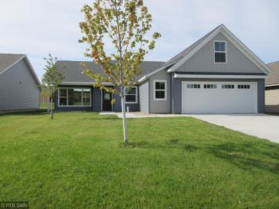 Willmar Single Family Home For Sale: 1721 Olena Avenue SE