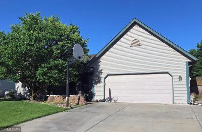 Chanhassen Single Family Home For Sale: 8705 Chanhassen Hills Drive N