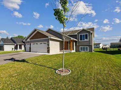 Isanti Single Family Home For Sale: 763 Park Brook Road NW