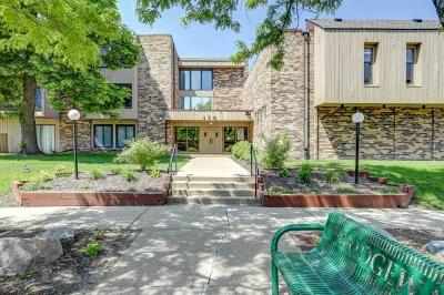 Hennepin County Condo/Townhouse For Sale: 450 Ford Road #231