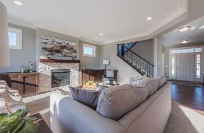 Otsego Single Family Home For Sale: 14699 77th Street NE