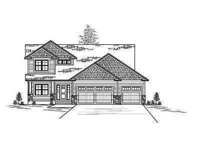 Ham Lake Single Family Home For Sale: Xxxx 146th Avenue NE