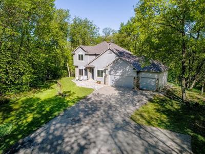 Prior Lake Single Family Home For Sale: 20106 Lynn Drive