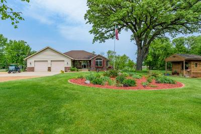 Carver County Single Family Home For Sale: 9190 County Road 52