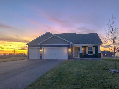 Otsego Single Family Home For Sale: 7577 O'day Avenue NE