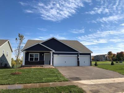 Otsego Single Family Home For Sale: 7252 Parson Avenue NE