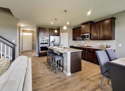 Blaine Single Family Home For Sale: 12370 Lever Street NE