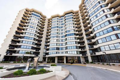 Edina Condo/Townhouse For Sale: 6566 France Avenue S #PH04