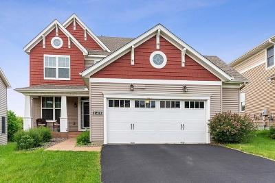Eden Prairie, Chanhassen, Chaska Single Family Home Coming Soon: 15419 Plumstone Drive