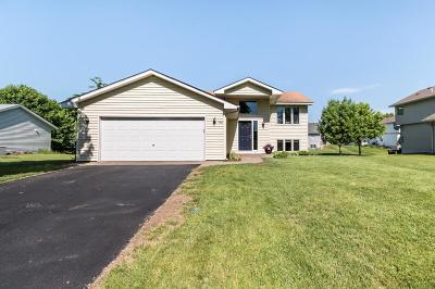 Carver Single Family Home For Sale: 498 Skyview Lane