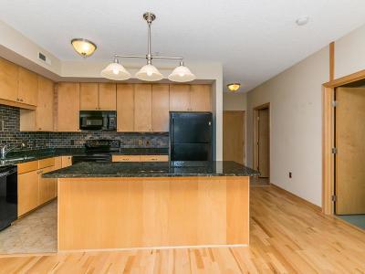 Bloomington Condo/Townhouse For Sale: 2201 Village Lane #A113