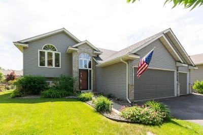 Farmington Single Family Home For Sale: 18818 Dylan Drive