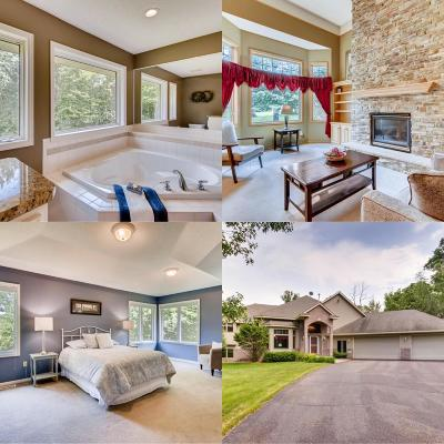 Andover Single Family Home For Sale: 5198 169th Lane NW
