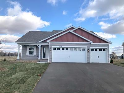 Otsego Single Family Home For Sale: 7640 O'day Avenue NE