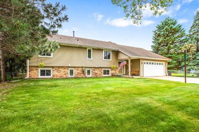 Chisago County, Washington County Single Family Home For Sale: 8633 Indian Boulevard S