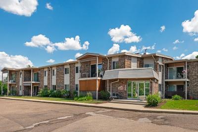 Bloomington Condo/Townhouse For Sale: 8045 Xerxes Avenue S #104