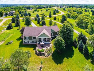 Prescott Single Family Home For Sale: W10783 566th Avenue