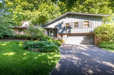 Mendota Heights Single Family Home For Sale: 687 Woodridge Drive