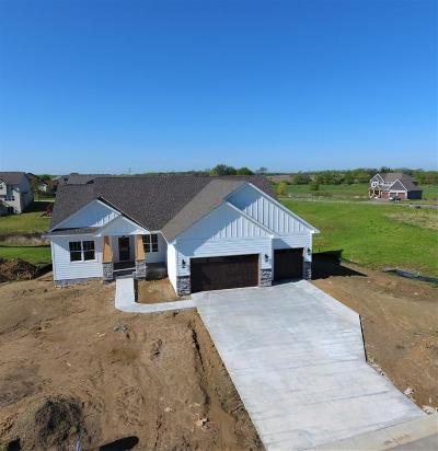 Ham Lake Single Family Home For Sale: 14246 Opal Street NE