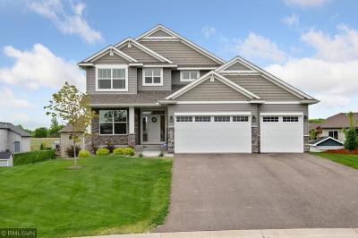 Otsego Single Family Home For Sale: 14701 76th Street NE