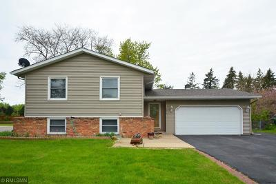 Lakeville Single Family Home For Sale: 16479 Glengary Court W