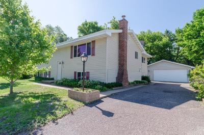 Anoka Single Family Home For Sale: 938 38th Avenue