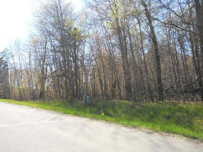 Breezy Point Residential Lots & Land For Sale: 24 Winter Trail