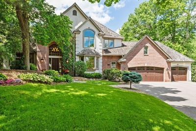 Eden Prairie Single Family Home For Sale: 10216 Antlers Ridge