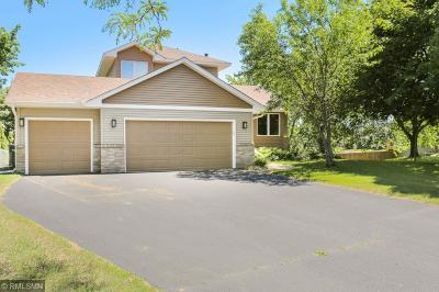 Blaine Single Family Home For Sale: 13259 Owatonna Court NE
