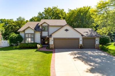 Burnsville Single Family Home For Sale: 13509 James Avenue S