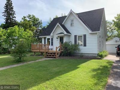 Grand Rapids Single Family Home For Sale: 1011 NW 3rd Avenue